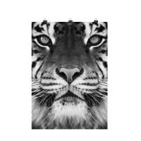 Photo sur toile avec pinces, toile décorative tigre